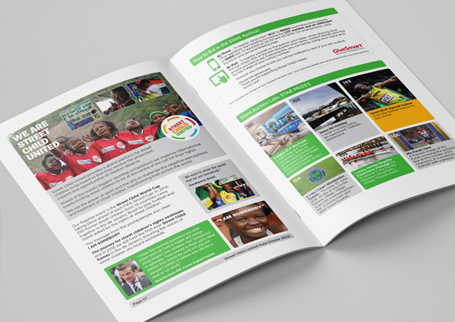 Fundraising brochure design 5