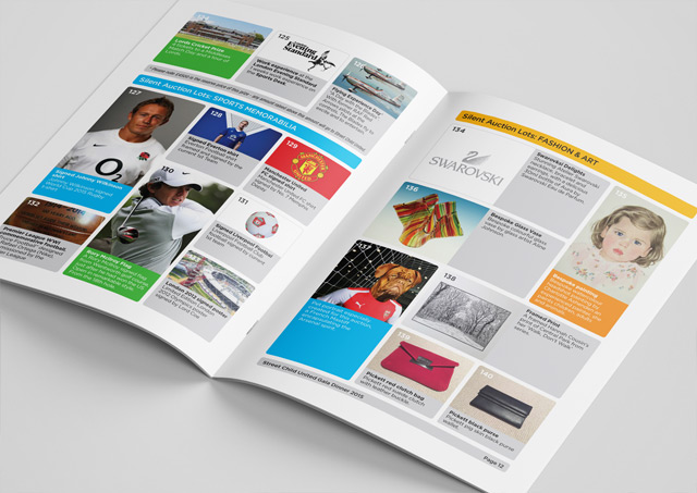 Fundraising brochure design 7